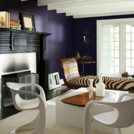 color of the year 2017 benjamin moore Shadow 2117-30 aura 524 farby-dekoracje.pl